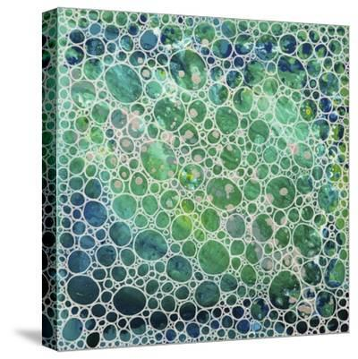 Dimension 20-Hilary Winfield-Stretched Canvas Print