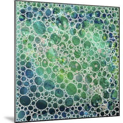 Dimension 20-Hilary Winfield-Mounted Giclee Print
