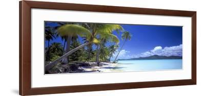 0130 Tropical Paradise-Doug Cavanah-Framed Giclee Print