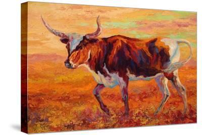 Longhorn Heifer-Marion Rose-Stretched Canvas Print