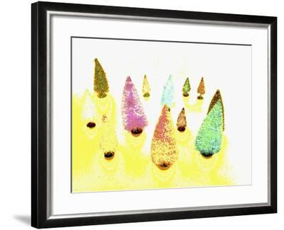 DSC0697-Tom Kelly-Framed Photographic Print