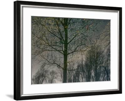 Your Luck Pushes Back-Geoffrey Ansel Agrons-Framed Photographic Print