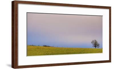 286-Dan Ballard-Framed Photographic Print