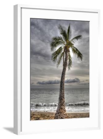 J141-Robert Kaler-Framed Photographic Print