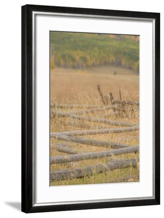 453-Dan Ballard-Framed Photographic Print