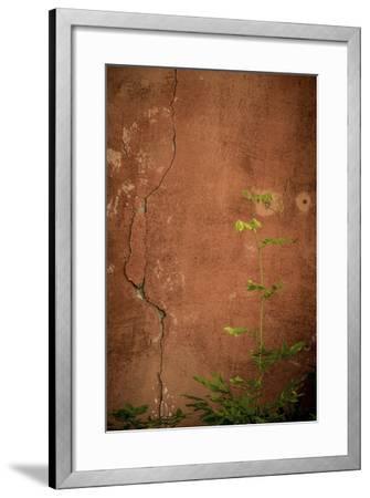 366-Dan Ballard-Framed Photographic Print