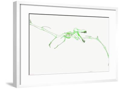 DSC-1042-Tom Kelly-Framed Photographic Print