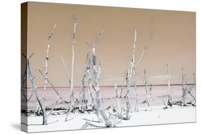 Cuba Fuerte Collection - Ocean Wild Nature - Pastel Orange-Philippe Hugonnard-Stretched Canvas Print