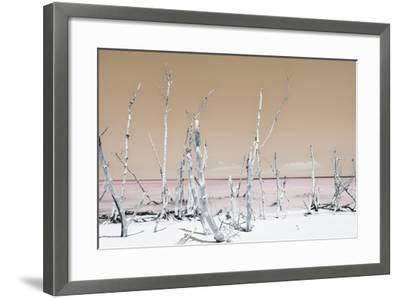 Cuba Fuerte Collection - Ocean Wild Nature - Pastel Orange-Philippe Hugonnard-Framed Photographic Print