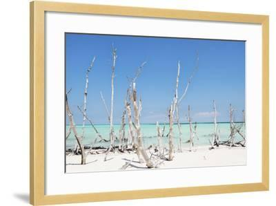 Cuba Fuerte Collection - Ocean Wild Nature-Philippe Hugonnard-Framed Photographic Print