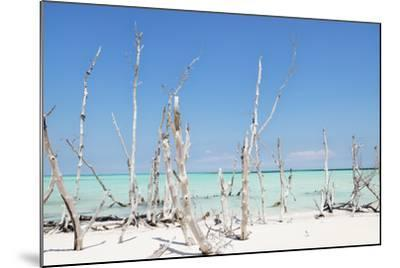 Cuba Fuerte Collection - Ocean Wild Nature-Philippe Hugonnard-Mounted Photographic Print