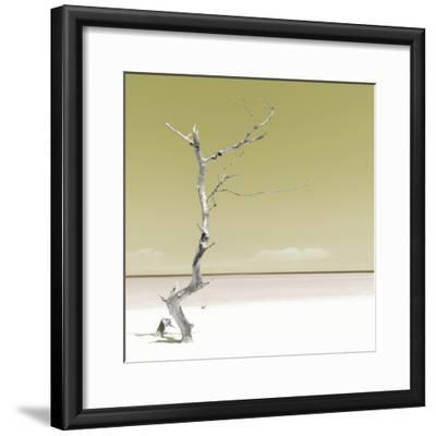 Cuba Fuerte Collection SQ - Alone on the White Sandy Beach - Pastel Yellow-Philippe Hugonnard-Framed Photographic Print
