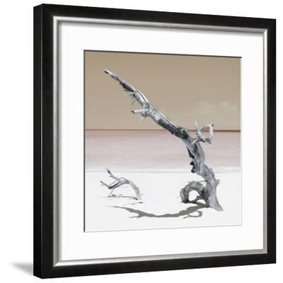 Cuba Fuerte Collection SQ - Solitary Tree - Pastel Orange-Philippe Hugonnard-Framed Photographic Print