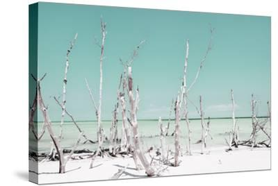 Cuba Fuerte Collection - Ocean Wild Nature - Pastel Coral Green-Philippe Hugonnard-Stretched Canvas Print
