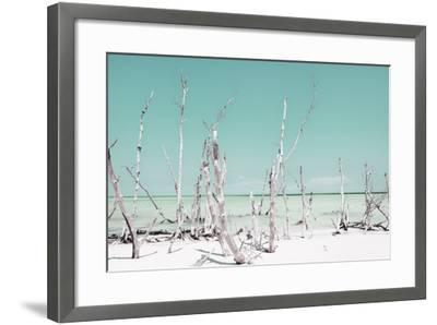 Cuba Fuerte Collection - Ocean Wild Nature - Pastel Coral Green-Philippe Hugonnard-Framed Photographic Print