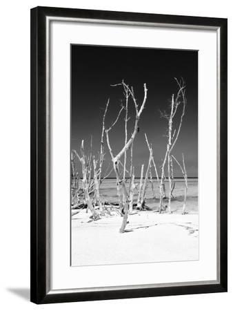 Cuba Fuerte Collection B&W - White Trees Beach V-Philippe Hugonnard-Framed Photographic Print