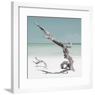 Cuba Fuerte Collection SQ - Solitary Tree - Pastel Aquamarine-Philippe Hugonnard-Framed Photographic Print