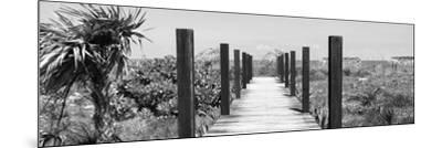 Cuba Fuerte Collection Panoramic BW - Wooden Jetty on the Beach-Philippe Hugonnard-Mounted Photographic Print