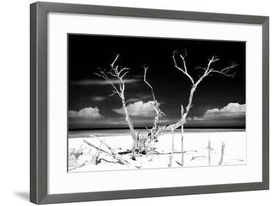 Cuba Fuerte Collection B&W - Trees and White Sand II-Philippe Hugonnard-Framed Photographic Print