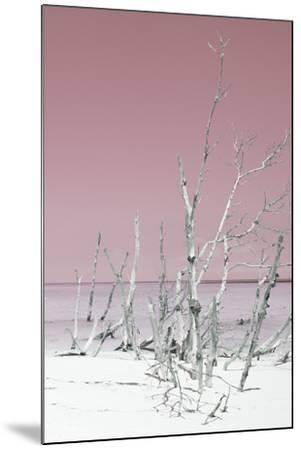 Cuba Fuerte Collection - Wild White Sand Beach III - Pastel Pink-Philippe Hugonnard-Mounted Photographic Print