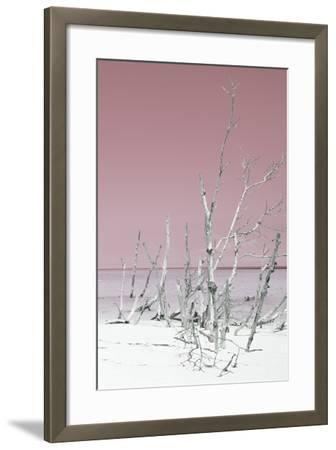 Cuba Fuerte Collection - Wild White Sand Beach III - Pastel Pink-Philippe Hugonnard-Framed Photographic Print