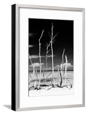 Cuba Fuerte Collection B&W - Trees and White Sand XIV-Philippe Hugonnard-Framed Photographic Print