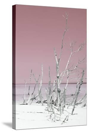 Cuba Fuerte Collection - Wild White Sand Beach III - Pastel Pink-Philippe Hugonnard-Stretched Canvas Print