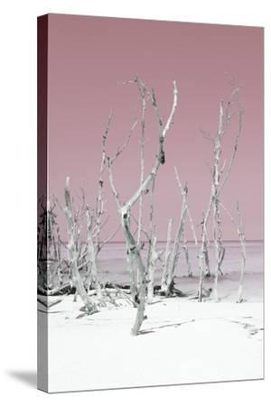 Cuba Fuerte Collection - Wild White Sand Beach II - Pastel Pink-Philippe Hugonnard-Stretched Canvas Print