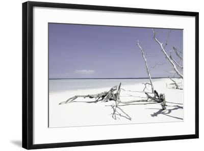Cuba Fuerte Collection - Wild Purple Lagoon-Philippe Hugonnard-Framed Photographic Print