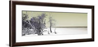 Cuba Fuerte Collection Panoramic - Sandy Beach Pastel Olive-Philippe Hugonnard-Framed Photographic Print