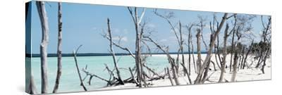 Cuba Fuerte Collection Panoramic - Tropical Wild Beach-Philippe Hugonnard-Stretched Canvas Print