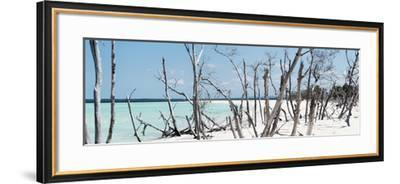 Cuba Fuerte Collection Panoramic - Tropical Wild Beach-Philippe Hugonnard-Framed Photographic Print