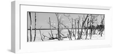 Cuba Fuerte Collection Panoramic BW - Tropical Wild Beach-Philippe Hugonnard-Framed Photographic Print