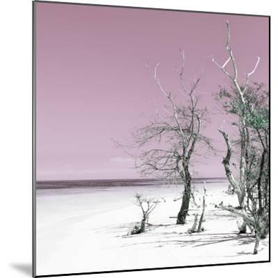Cuba Fuerte Collection SQ - Pale Violet Summer-Philippe Hugonnard-Mounted Photographic Print