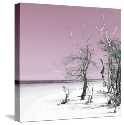 Cuba Fuerte Collection SQ - Pale Violet Summer-Philippe Hugonnard-Stretched Canvas Print