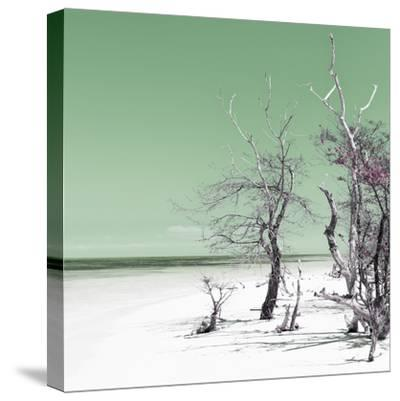 Cuba Fuerte Collection SQ - Olive Summer-Philippe Hugonnard-Stretched Canvas Print