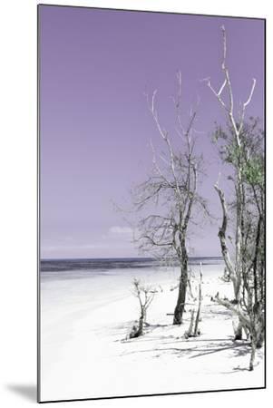 Cuba Fuerte Collection - Plum Summer-Philippe Hugonnard-Mounted Photographic Print
