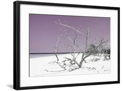 Cuba Fuerte Collection - Tropical Beach Nature - Pastel Purple-Philippe Hugonnard-Framed Photographic Print