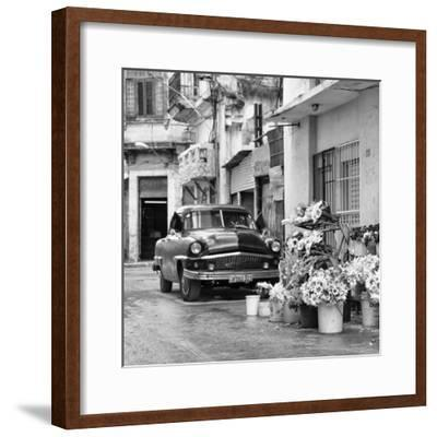 Cuba Fuerte Collection SQ BW - Sunflowers-Philippe Hugonnard-Framed Photographic Print