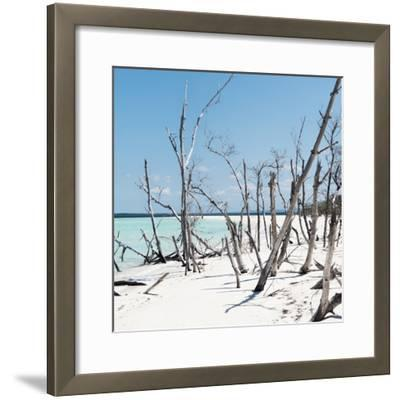 Cuba Fuerte Collection SQ - Tropical Wild Beach-Philippe Hugonnard-Framed Photographic Print