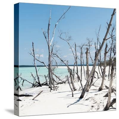 Cuba Fuerte Collection SQ - Tropical Wild Beach-Philippe Hugonnard-Stretched Canvas Print
