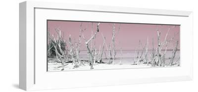 Cuba Fuerte Collection Panoramic - Wild Beach - Pastel Red-Philippe Hugonnard-Framed Photographic Print