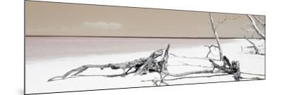Cuba Fuerte Collection Panoramic - Wild Orange Lagoon-Philippe Hugonnard-Mounted Photographic Print