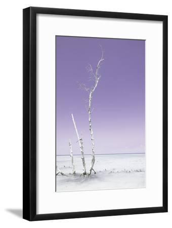 Cuba Fuerte Collection - Ocean Nature - Pastel Purple-Philippe Hugonnard-Framed Photographic Print