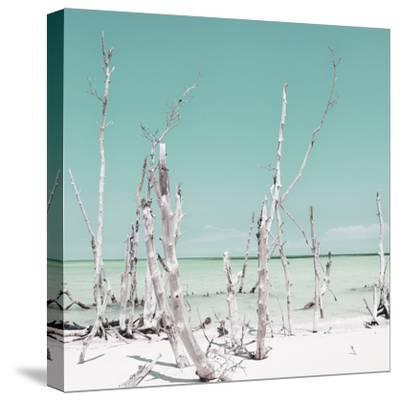 Cuba Fuerte Collection SQ - Ocean Wild Nature - Pastel Coral Green-Philippe Hugonnard-Stretched Canvas Print