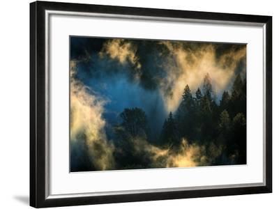 Light & Fog Warm Abstract Design Pacific Northwest Oregon-Vincent James-Framed Photographic Print