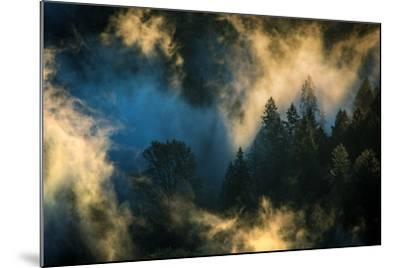 Light & Fog Warm Abstract Design Pacific Northwest Oregon-Vincent James-Mounted Photographic Print