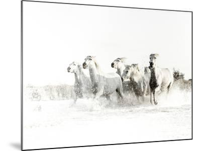 White Water-Valda Bailey-Mounted Photographic Print