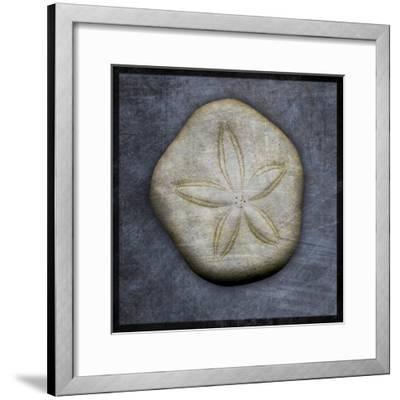 Sea Biscuit-John W Golden-Framed Giclee Print