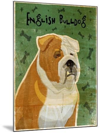 English Bulldog Tan and White-John W Golden-Mounted Giclee Print